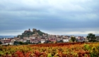 The village of San Vicente in Rioja from one of Contador's many vineyards.