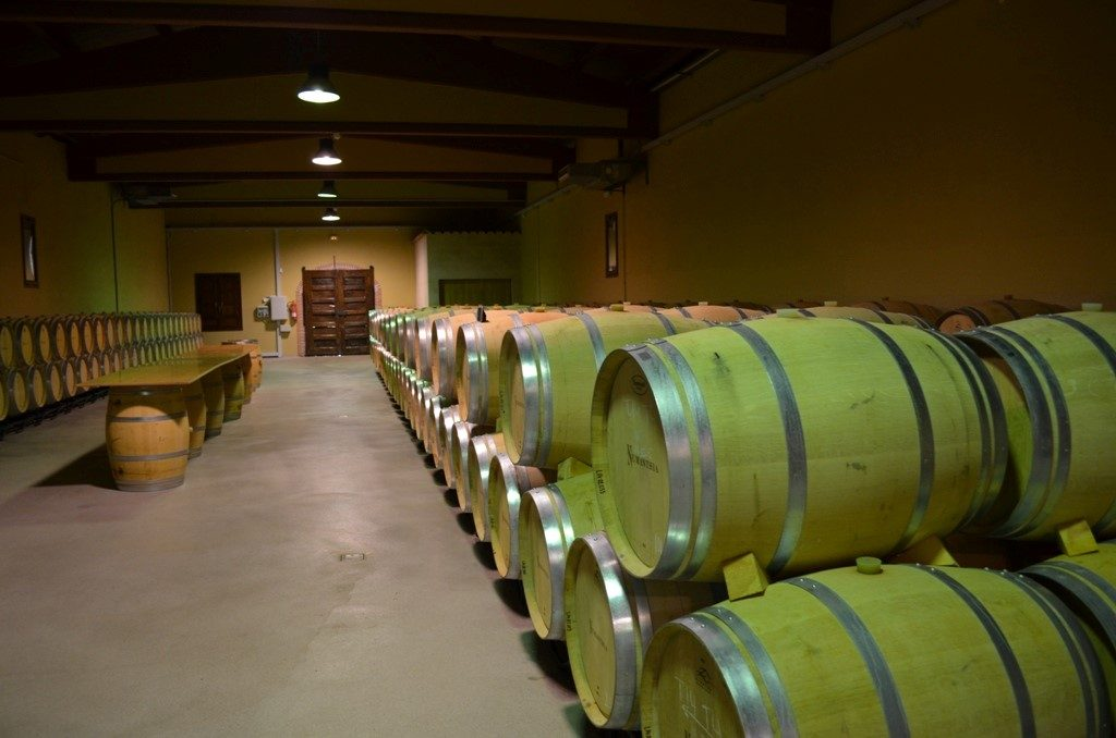 Barrels resting peacefully in the cellars at Numanthia.
