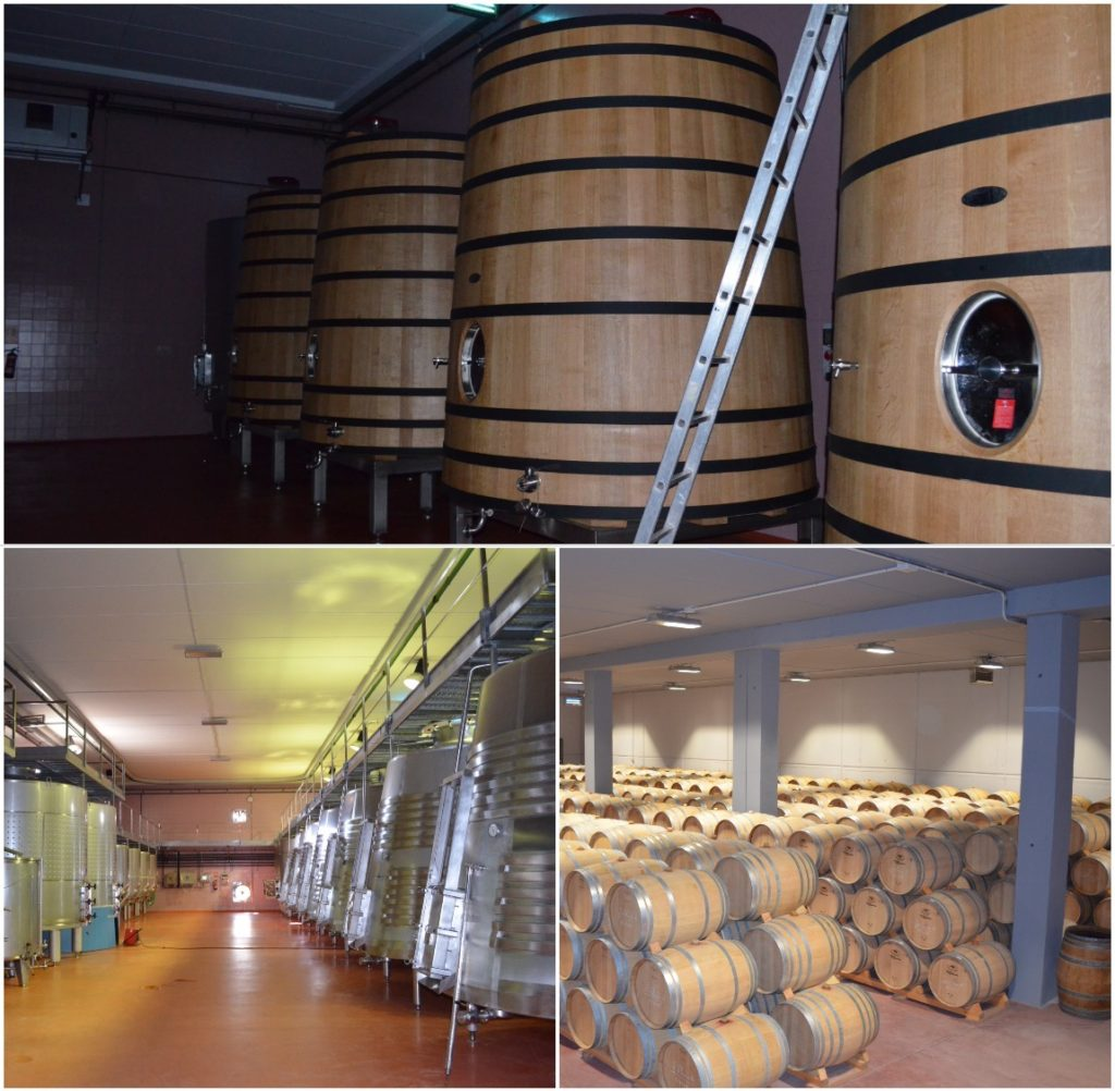 French oak Taransaud fermentation tanks, steel versions and the barrel aging room.